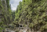 Green Gorge