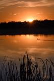 Sunset over Lotus Lake