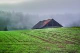 The Barn in the Fog