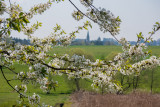 Our Village in Spring
