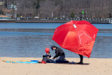 2021-03-27 (Bar Beach)-1000948.jpg