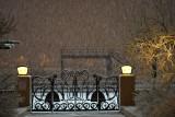 Snow at night 063_DSC03149
