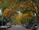 Promenade en automne dans ma ville  à Québec 2020 / Fall walk in Quebec city 2020