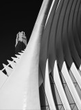 Architectural Scapes