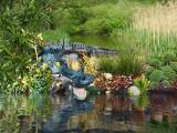 Jurassic Park 17