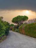 The enriching pleasure of a solitary walk...