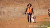 2019 CSCA Hunt  190317 036.jpg