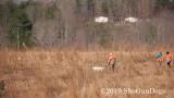 2019 CSCA Hunt  190317 045.jpg