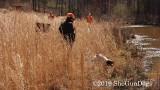 2019 CSCA Hunt  190317 135.jpg