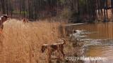 2019 CSCA Hunt  190317 186.jpg