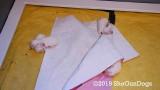 Jolene 1 Litter  190711 048.jpg