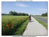 DRW-2012_059.jpg