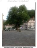 DRW-2012_086.jpg