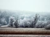 Landschaft.f_200123_3669.jpg