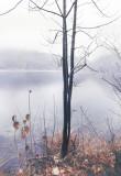 Landschaft.f_201202_3925.jpg