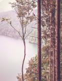 landscapes_color