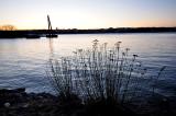 Aube au Bassin Brown