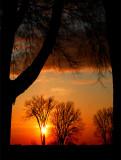L'aube arrive sur les Plaines