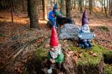 21st November 2020  gnome meet