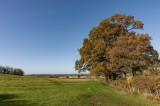 Cotswold Countryside 11