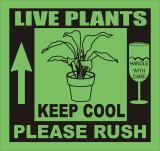LIVE_PLANTS_KEEP_COOL_colour.jpg