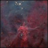 Fisher king nebula
