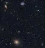 M 49 group.jpg