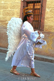 Angel girl with basket in procession