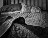 Empty Bed Blues, Josh White