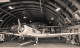 Open Hangar Door
