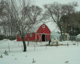 The Red Barn and Horses Caught My Eye