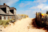 Cape Cod, Pathway to The Beach