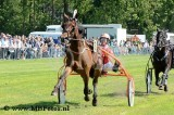Grasbaan Hilversum. Update: 10-6-19