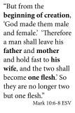 Beginning of Creation sign 24x36 .jpg Mark 10:6-8