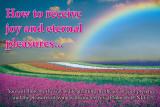 Joy_Pleasures_sign_36_x_24.jpg