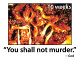 Shall_Not_Murder_Sign_24_x_18_Smith_Patte.jpg
