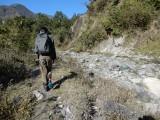 River bird walk