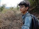 On an ant walk in Dehradun