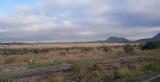 Engikaret Lark Plains--Acacia Scrub to South