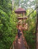Canopy walk at Botanical Garden, Trang