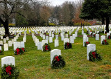 Christmas at Zachary Taylor National Cemetery