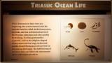 Triassic Ocean