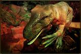 Primative Theropod Dinosaur