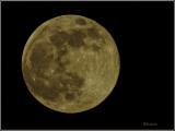 Pink Moon 4-26-21