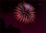Fireworks Over the Backyard