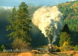 Passenger and Steam Trains