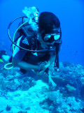 DivePNG Jun19 0007.jpg