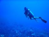 DiveBelize Nov19 0777.jpg