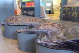 Model of the Giant's Causeway scenic area at the Visitor's Centre