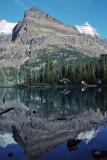 Canadian Rockies (1995)
